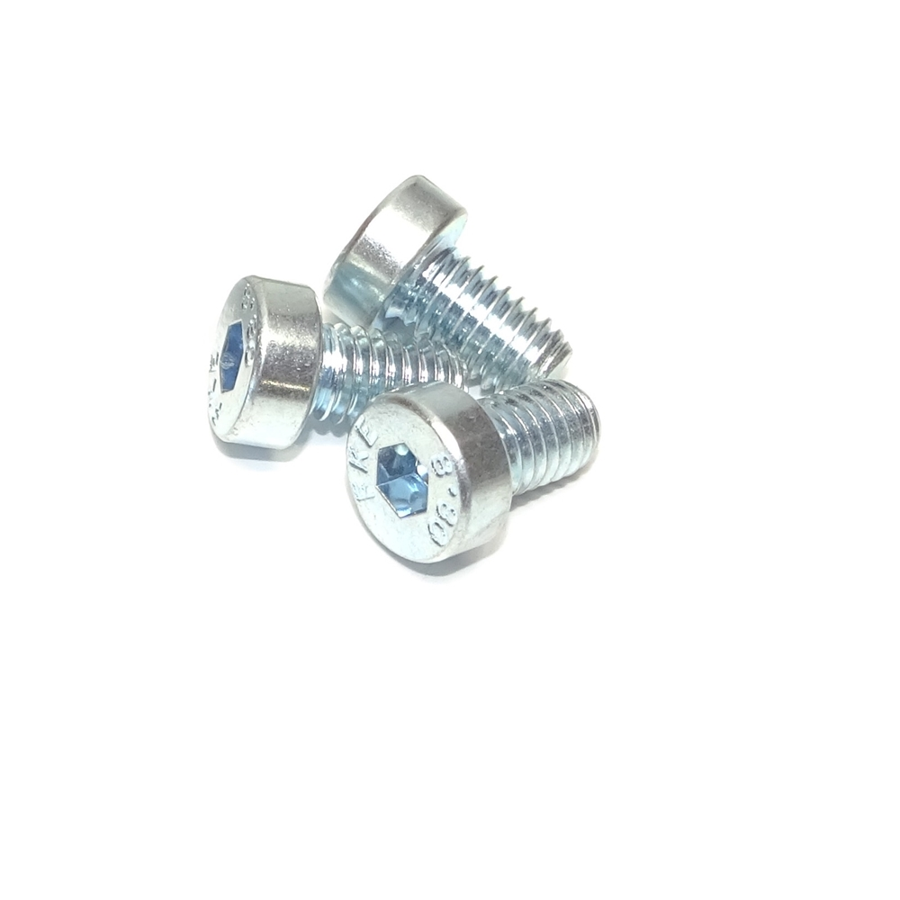 M6 Low Profile Pan Head screw